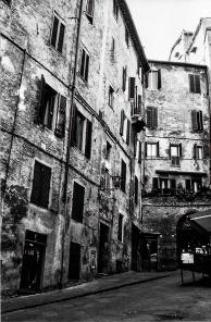 Siena 1