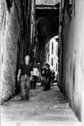 Siena 3